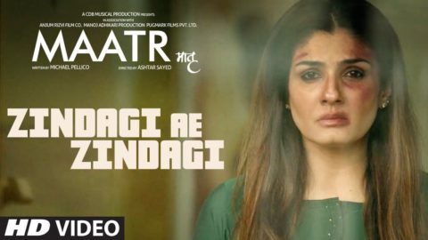 Zindagi Aye Zindagi Song from Maatr ft Raveena Tandon